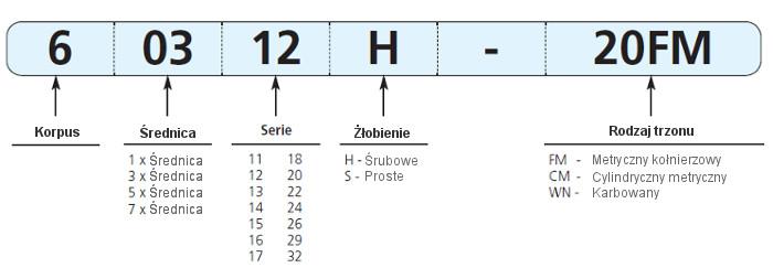 oznaczenie_korpusu_gen3